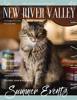 NRV Magazine March-April 2018